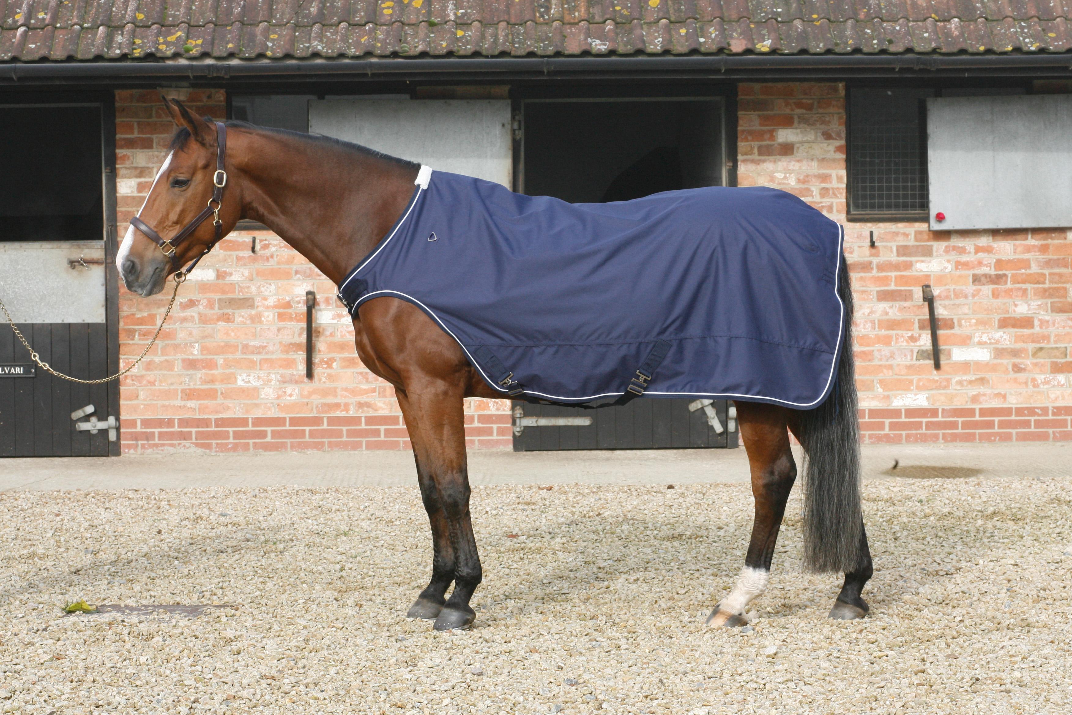 Mark Todd 🐴 Horse Walker Lunge Rug