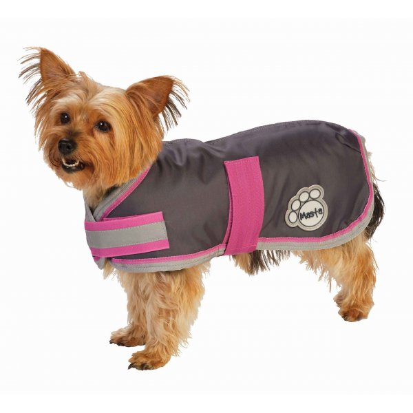 Masta Grey Waterproof Nylon Dog Coat