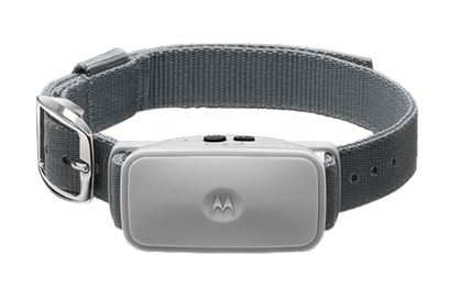 Motorola Bark 200U Ultra Sonic Anti-Bark Collar (Shock-Free)
