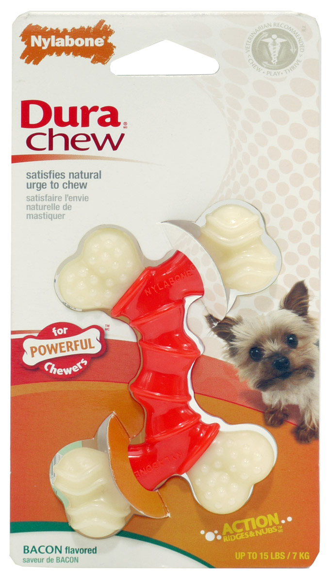 Can Cats Chew Nylabone