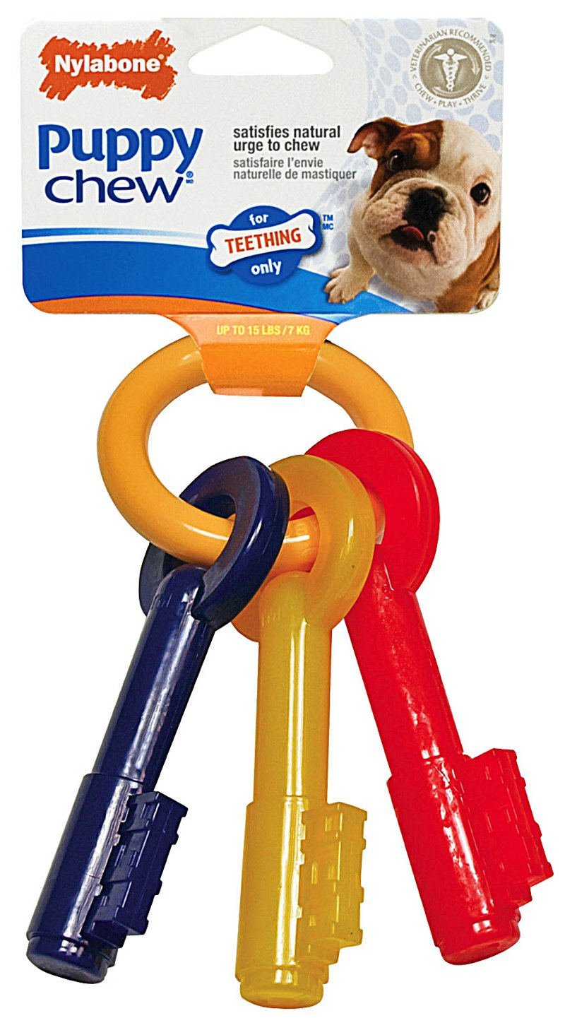 Nylabone 🐶 Puppy Teething Keys Chew Toys