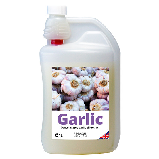 Equestrizone Garlic Solution for Horses