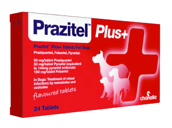 Worming Tablets For Dogs Reviews