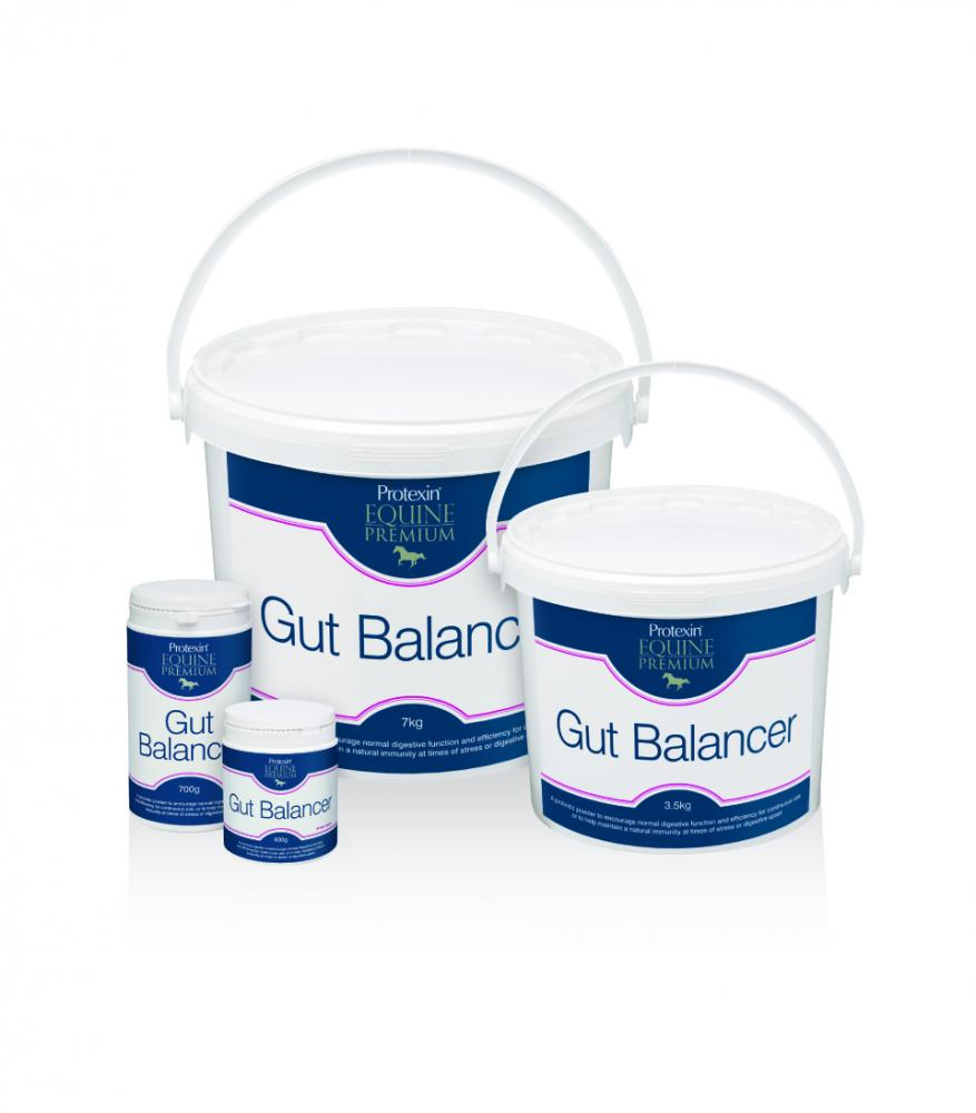 Protexin Gut Balancer (Bio-Premium) for Horses