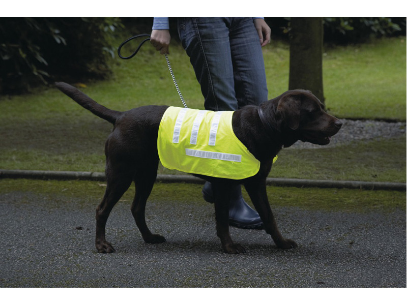 Rosewood Reflective Safety Range Coats and Harnesses