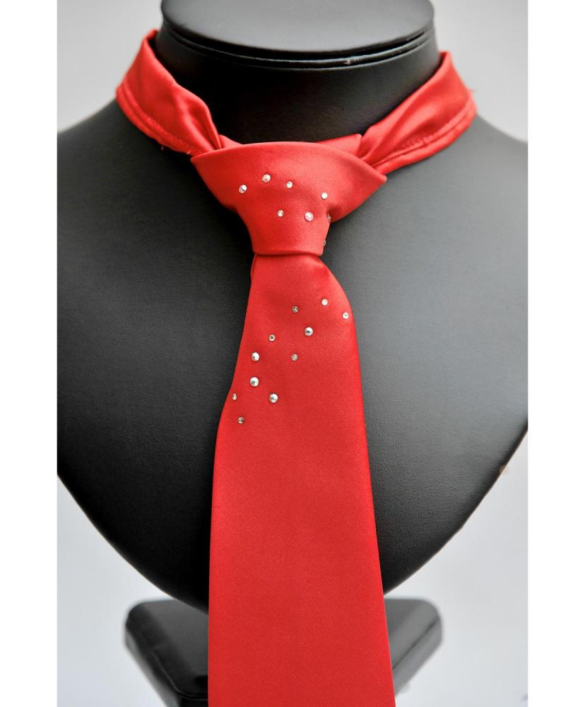 ShowQuest Ready Tied Tie with Crystals