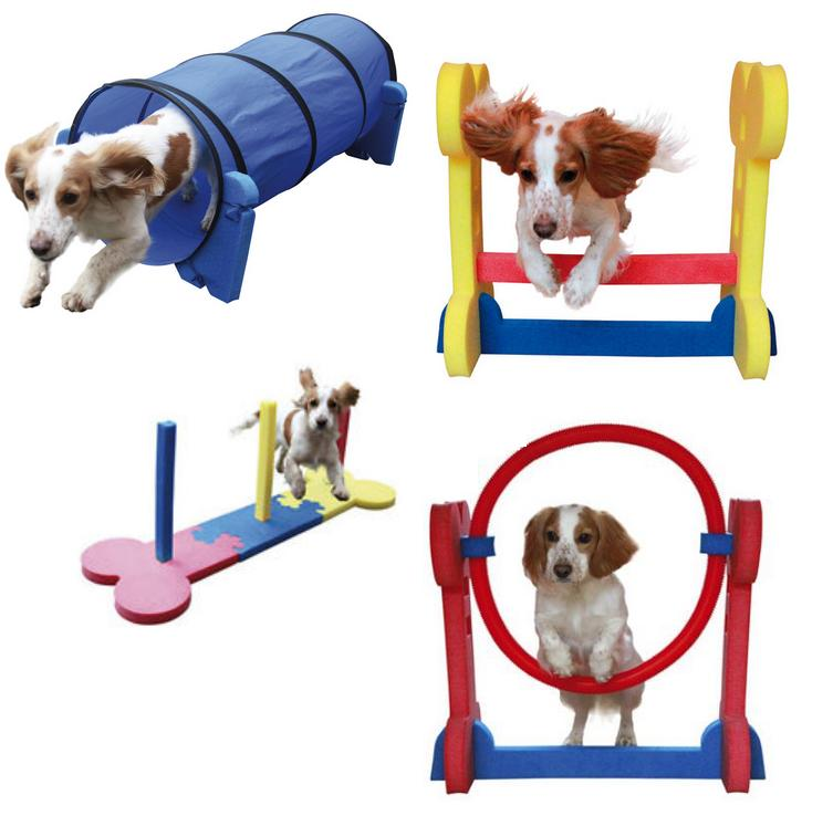 Rosewood Small Dog Agility Toys