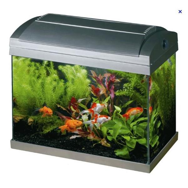 Superfish Aquariums   Superfish Aqua 60