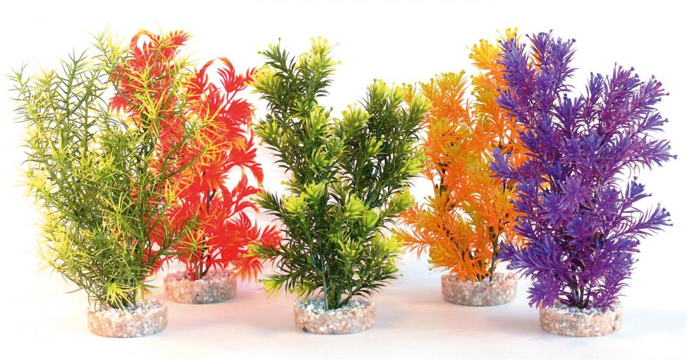 Sydeco Coloured Jungle Aquarium Plant