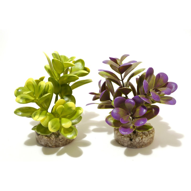 Sydeco Coloured Pebble Leaves Aquarium Plant