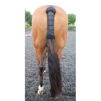 Horse Tail Guards