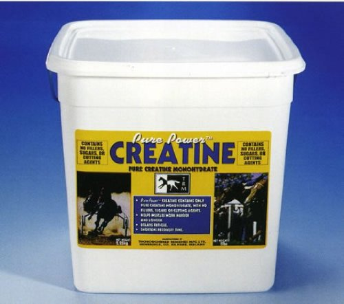 TRM Pure Power Creatine for Horses