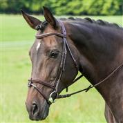 USG Cassiopeia Flash Bridle