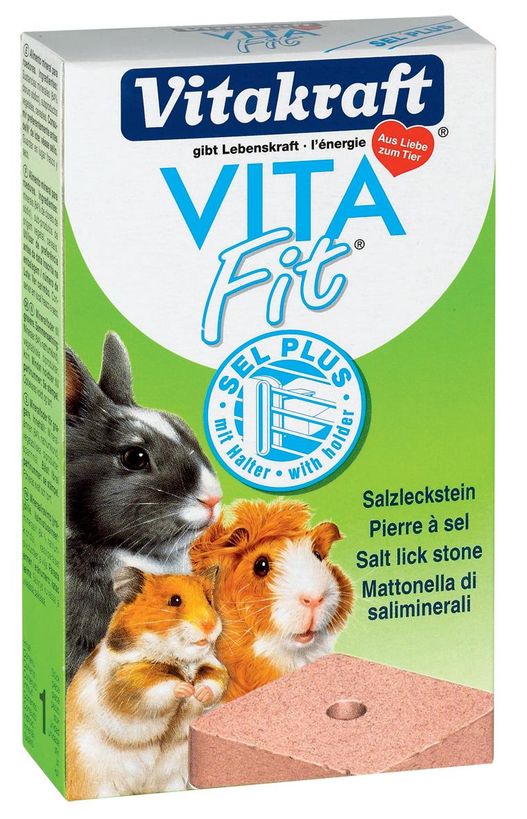 rabbit salt lick