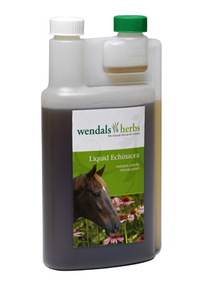 Wendals Liquid Echinacea for Horses