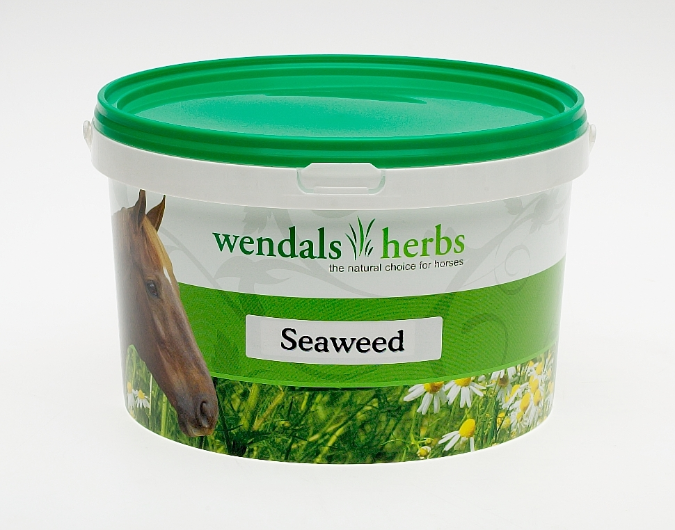 Wendals Seaweed for Horses