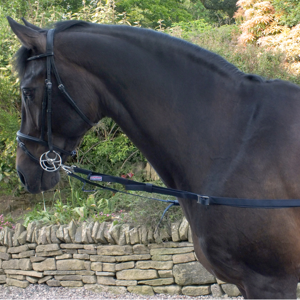 Whitaker Side Reins Elasticated