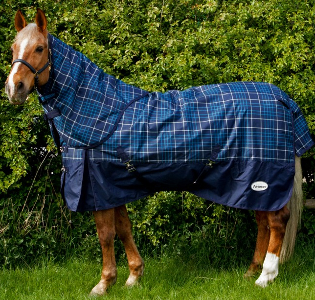 Whitaker Turnout Rug with Hood Chiserley