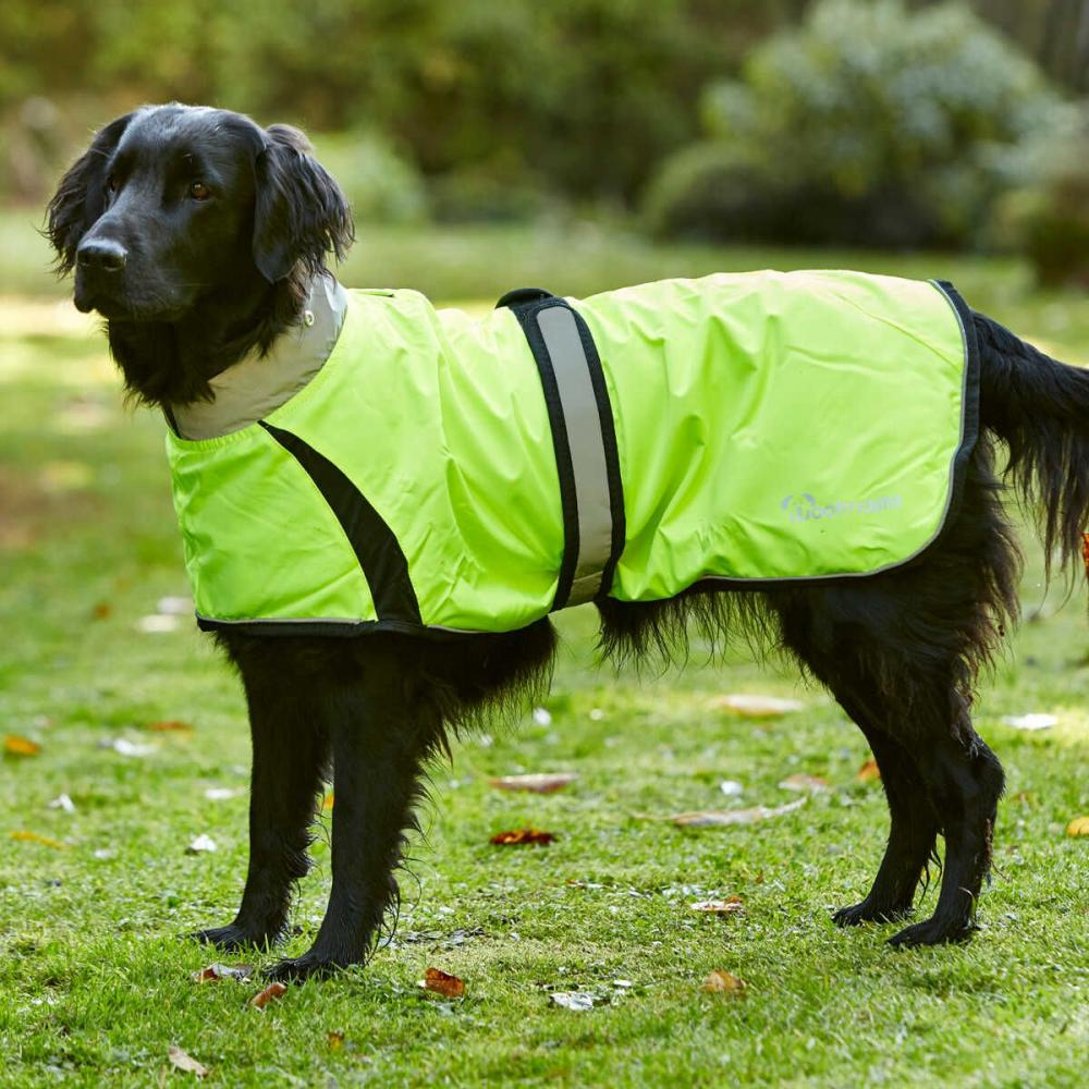 Woofmasta Hi Viz Flashing Dog Coat