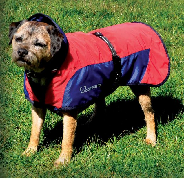 Woofmasta Secret Flash Dog Coat