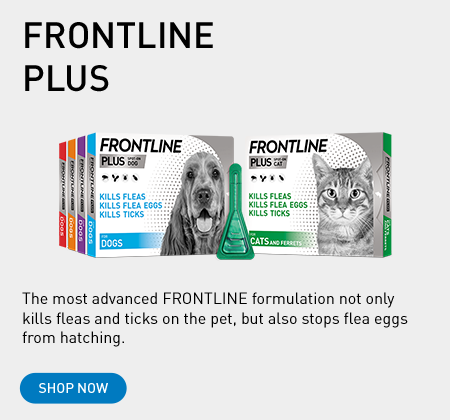 FRONTLINE PLUS flea and tick treatment