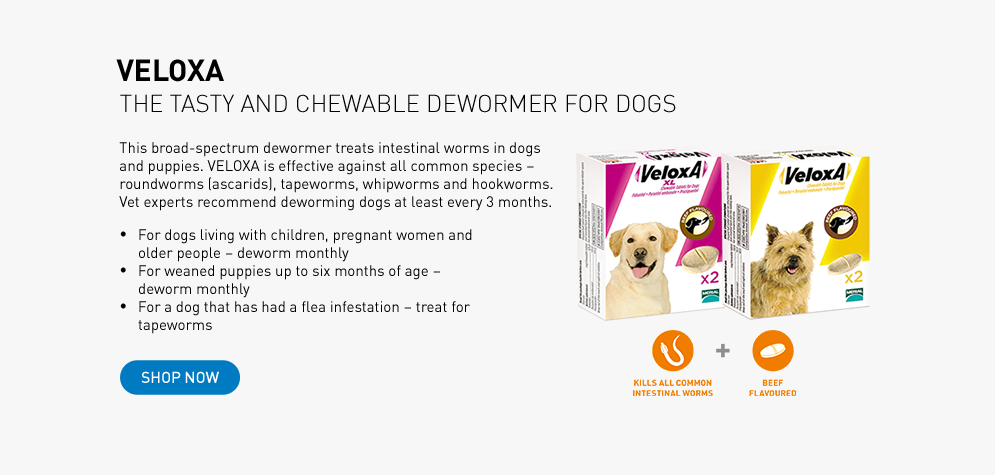 VELOXA wormer for dogs