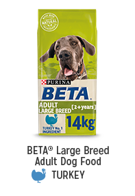 Shop for BETA Large Breed Adult Dog Food Turkey