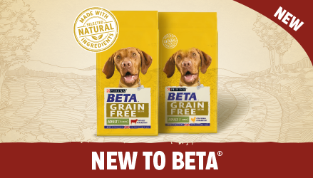See what's new from the BETA range