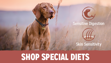 Shop for BETA Special Diets