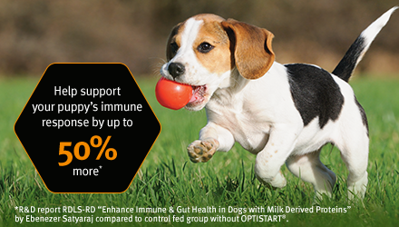 Help support your puppy's immune response by up to 50% more