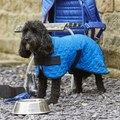 Woofmasta Cooling Dog Coat
