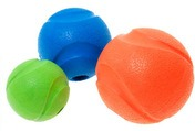 Chuckit Fetch Ball Dog Toy