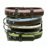 Doggy Things Striped Dog Collar