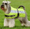 Flecta Hi-Vis Dog Jacket