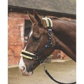 Mark Todd Fleece Lined Headcollar and Lead Rope