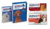 Milbemax Worming Tablets for Dogs & Cats