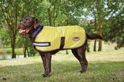 WeatherBeeta Reflective Dog Coat