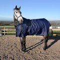 Whitaker Turnout Rug Standard Neck Firgrove