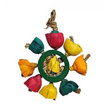 Boredom Breakers Blossom Ring Bird Toy