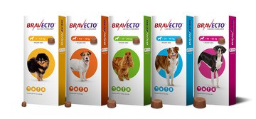 Bravecto Flea Treatments for Cats & Dogs