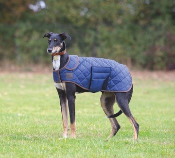 Digby & Fox Quilted Dog Coat Navy