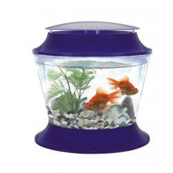 Fish 'R' Fun Plastic Bowl & Lid
