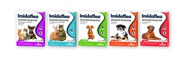 ImidaFLEA Spot-On Solution for Cats, Rabbits and Dogs