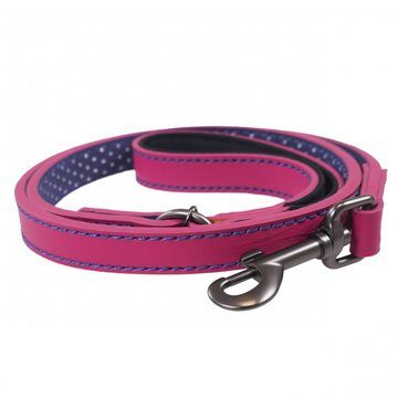 Joules For Dapper Dogs Leather Dog Lead with Padded Handle