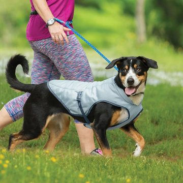 Kurgo Core Cooling Vest for Dogs