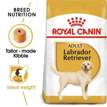 ROYAL CANIN® Labrador Retriever Adult Dry Dog Food