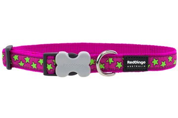 Red Dingo Lime Stars on Hot Pink Collar