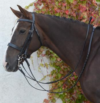 Mackey Classic Double Bridle