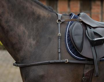 Mark Todd Breastplate 4-Point with Brass Fittings Black