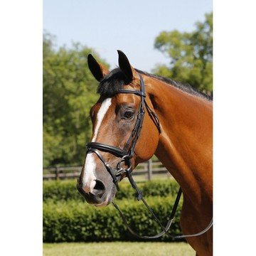 Mark Todd Bridle Performance Flash with Brass